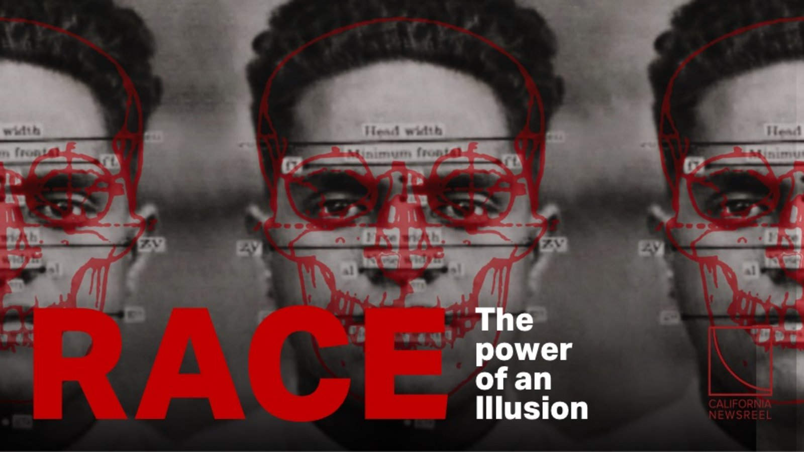Race - The Power of an Illusion